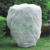 plant cover, PP non woven fabric cover pp spunbond nonwoven  rolls  plant cover