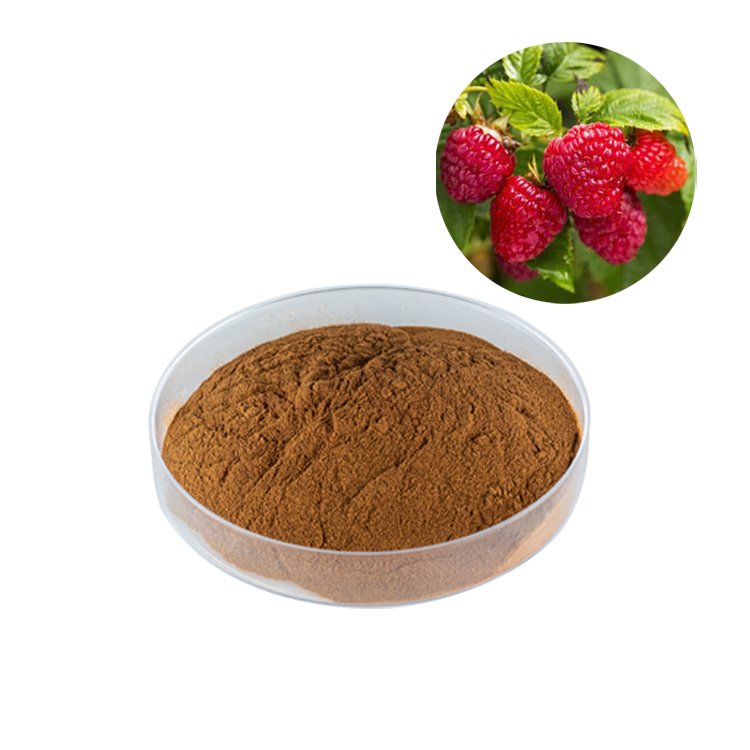 Free Shipping The Best Price Bulk Raspberry Fruit Juice <strong>Powder</strong>