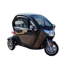 2019 Hot Sale Trend Mini 1200w 3 / 4 Wheels Electric Car For Houseware