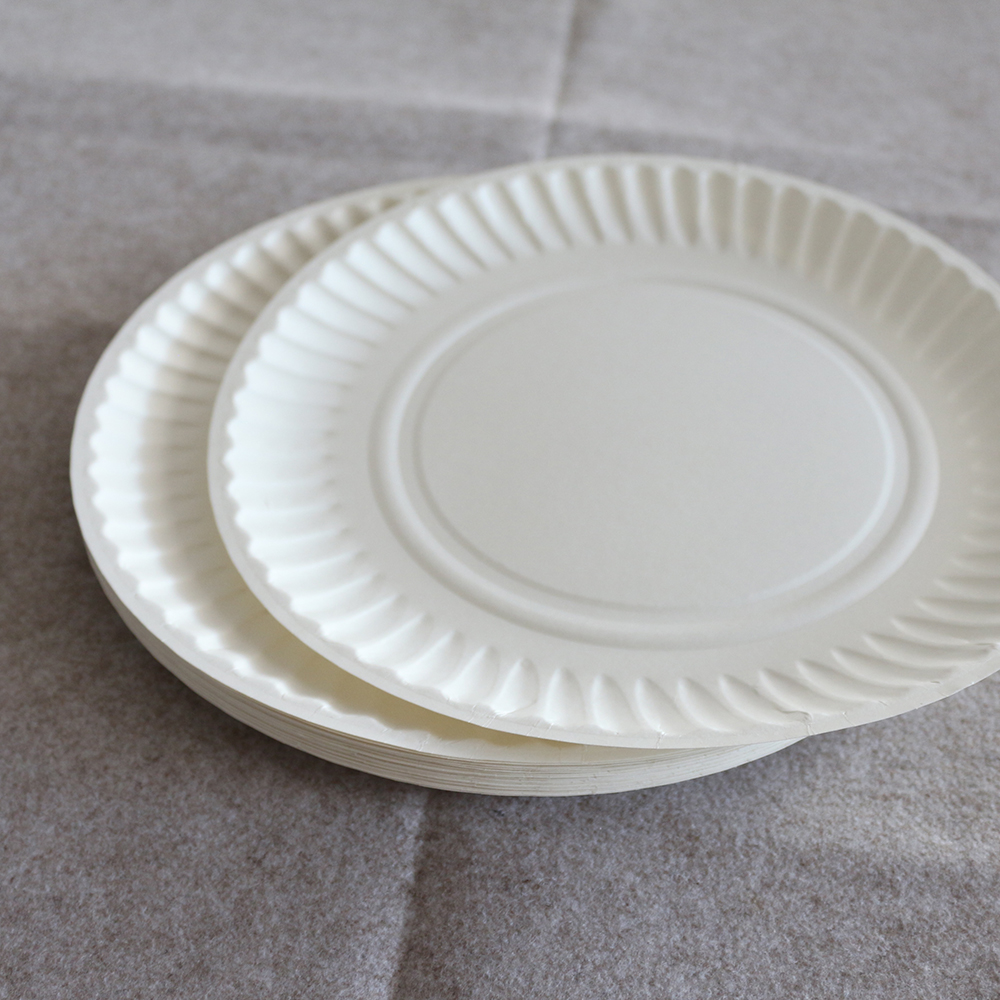 Factory Price 9 Inch White Paper Plates Disposable Eco-friendly Birthday Party Paper Plates