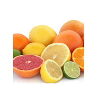 South Africa Fresh Citrus Fruit