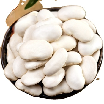 Kidney Bean Dried White Kidney Beans For Canned