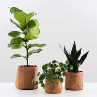 Environmental Washable Kraft Paper Pots for Flower Plant Bag