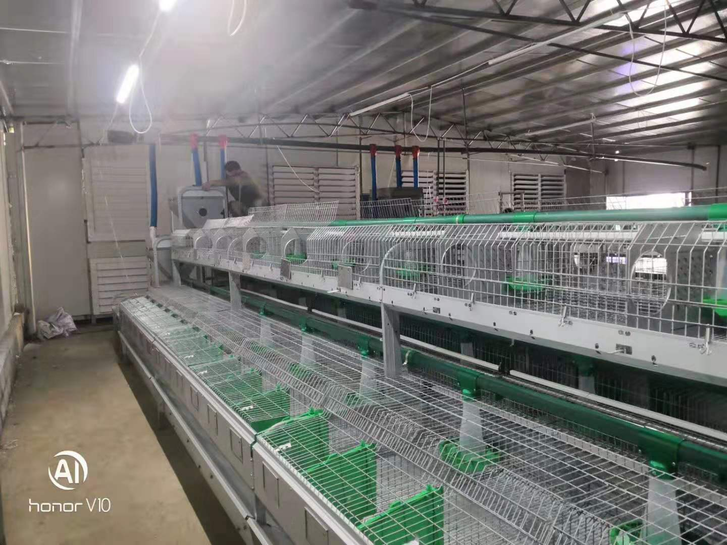 rabbit cage Factory  China  Layer welded rabbit cage wire mesh