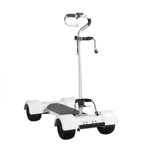 2019 Best 10 Inch Single Seat Electric Golf Cart 4 Wheels Electric Scooter for Golf