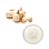 /product-detail/wholesale-best-price-with-dried-natural-ingredients-dehydrated-bulk-garlic-powder-62388240770.html