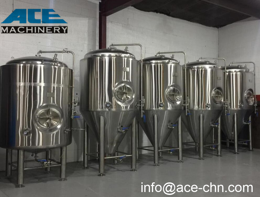 Ace New Design 100L Beer Brewing Equipment With Movable Cart