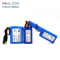 Custom battery, rechargeable li-ion li ion lithium battery pack,lithium ion rechargeable battery pack storage batteries