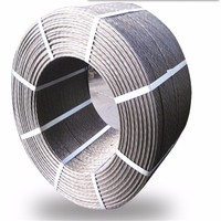 7x19 Galvanized Steel Wire Rope,stainless steel wire rope ,pvc coated strand core