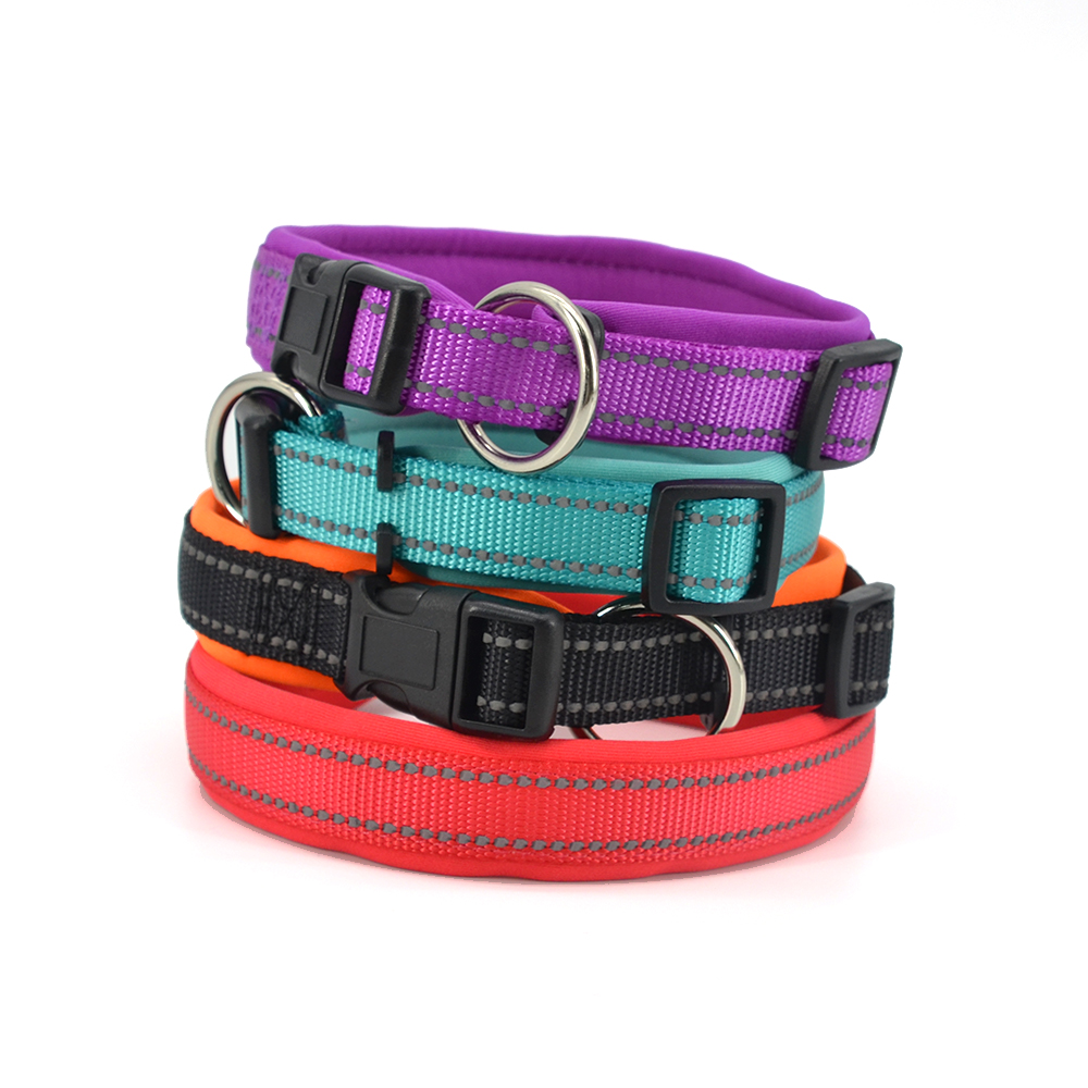Pet Accessories Cute Waterproof  Breathable Reflective Nylon Pet Dog Collar