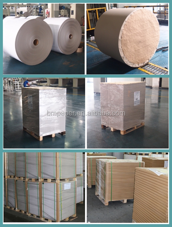 FSC Certificated 60gsm 70gsm 80gsm White Woodfree Uncoated Offset Paper Roll