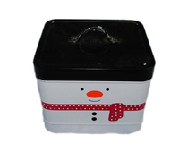 Wholesale metal square window mint Tin Box with plastic lid for candy