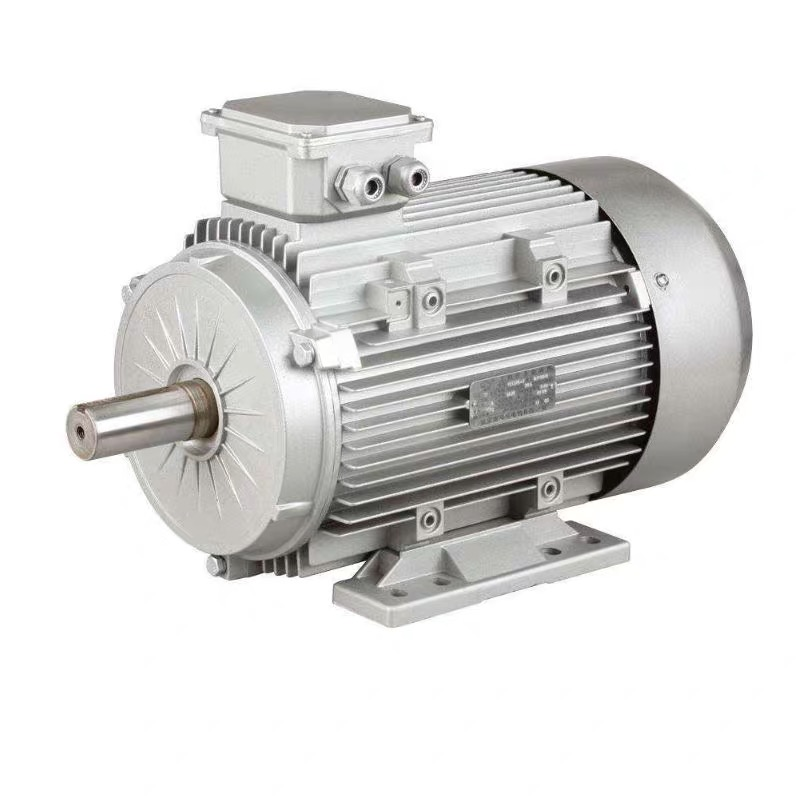 <strong>Y2</strong>-63M2-2 <strong>Y2</strong> series three phase asynchronous <strong>motor</strong> 380v AC electric induction <strong>motor</strong>