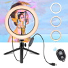 /product-detail/wholesale-tiktok-photographic-selfie-led-ring-light-26cm-10-inch-plastic-tripod-stand-for-live-stream-makeup-youtube-video-1600083042548.html