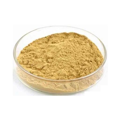 low price Choline Chloride powder  for poultry feed