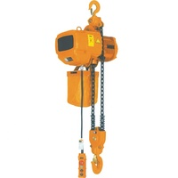 China Chain Hoist 125 kg Customized