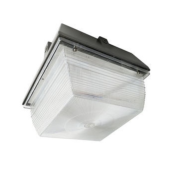 Traditional aluminum housing canopy ceiling light fixture