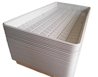 Black White ABS Plastic 4x4 4x6 4x8 Hydro Fodder Flood and Drain Table Suppliers /flood tray and tables