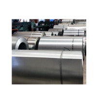 z60 z180 0.55mm thickness galvanized Steel Coil coated steel sheet