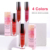Private Label Women Lipstick Makeup Fashion Sexy 4 Colors Waterproof Nude Matte Lip Gloss