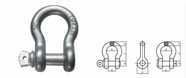 Hot sales 3/4 inch/metric size d ring shackle with polish surface