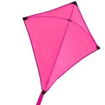 Custom high quality advertising kites,promotional kite