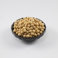 China Bulk Dried Yellow Soybeans for Sale
