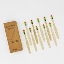 Wholesale 10 Packs Adults Eco friendly Biodegradable Bamboo Toothbrush