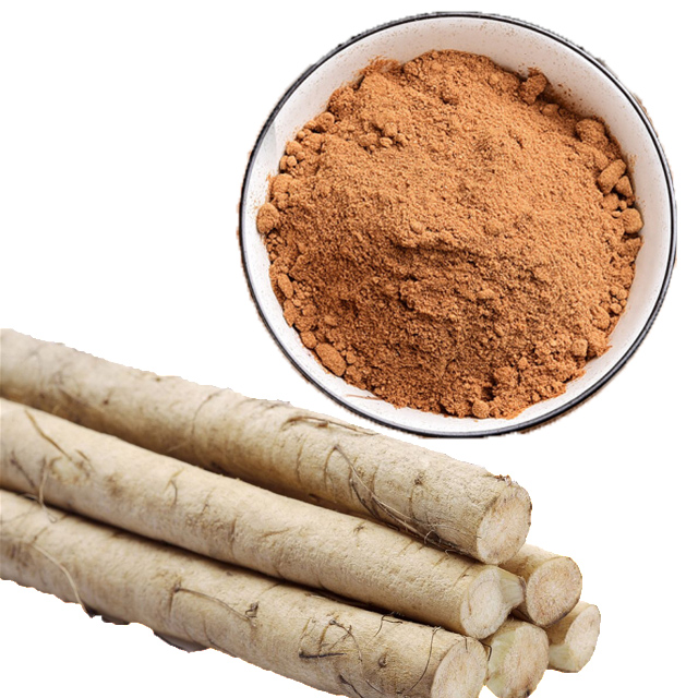 100% Natural burdock extract root <strong>powder</strong> for purifying blood