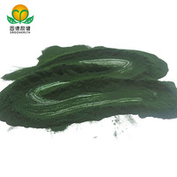 GMP Factory Supply Organic Chlorella Powder
