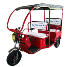cheap hot adult electric 3 wheel tricycle e motorcycle 48V 800W 60V1000W newest electric rickshaw for passenger