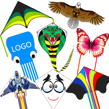 Wholesale high quality outdoor playing toy kites of many shapes with cheap price