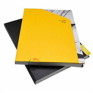 cheap professional brochure booklet catalog printing