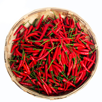 All types hot pepper seeds, chili pepper seeds, hot chili seeds for growing