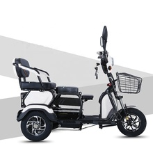 smallm power Family electric tricycle for parents 600w
