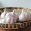 /product-detail/china-chinese-best-fresh-natural-garlic-price-new-crop-hot-sales-purple-garlic-62091400991.html