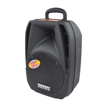 "China temeisheng wholesale 8"" bluetooth battery powered pa speaker with reasonable price"