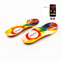 Dr. Warm Rechargeable USB Heated Warmer Insole Electric Shoes Insoles, Smart Heated Insoles for hunting