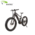 High Quality Fat Electric Bike with 750W MTB E Bike Motor Bicicleta Electrica