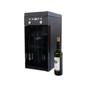 stainless steel Compressor Refrigerator electric wine dispenser