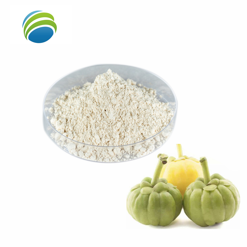Manufactures Supply 95% HCA Garcinia Cambogia Extract <strong>Powder</strong>