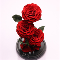 Luxury glass dome Natural Eternal Rose Preserved Flower Wholesale Forever Rose