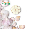/product-detail/wholesale-natural-garlic-normal-white-china-supplier-competitive-rate-62115329145.html