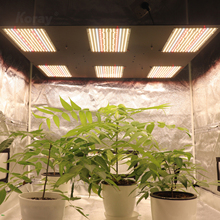 Koray quantum board 800v2 samsungs lm301b/lm561c/lm301h/lm561h 600watt with red 660nm led grow light growlights plant lamp