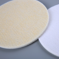 3 inch glass polish pad