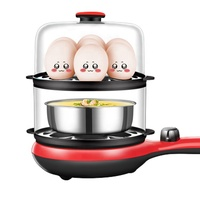 Hot new selling double layer huge capacity rapid stainless steel plastic boiler electric egg cooker