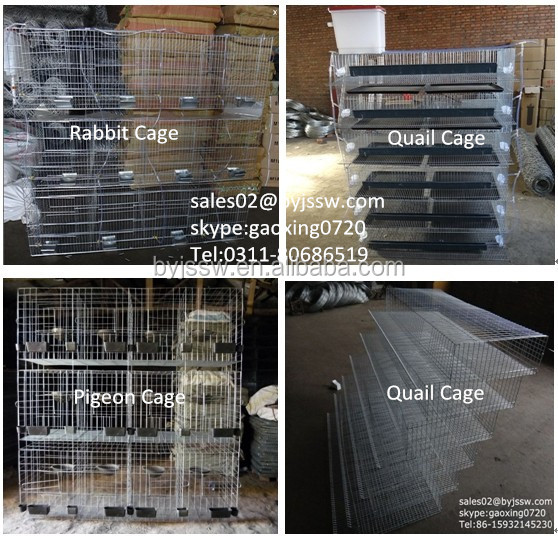 Layer Chicken Cage of Poultry Equipment With Auto Drinking System
