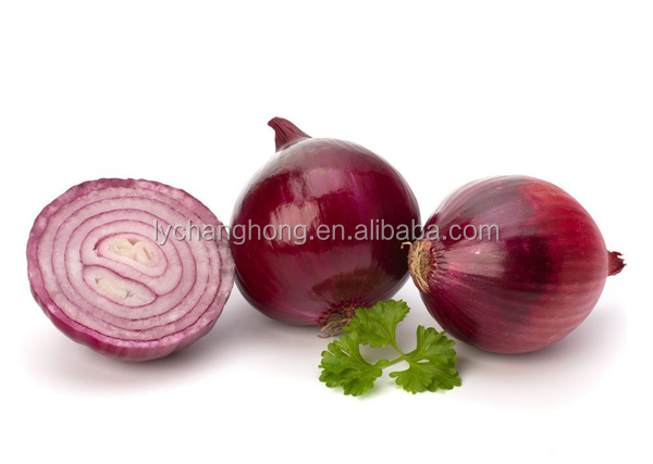 [HOT]China fresh red onion/yellow onion importer from dubai with lowest price