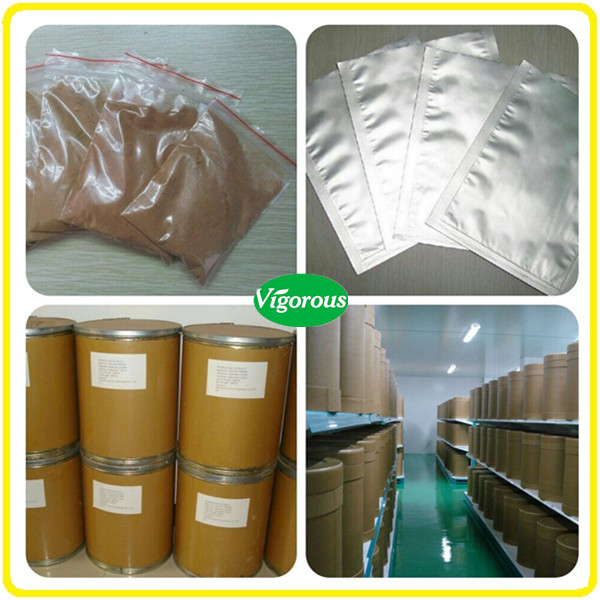 High quality Astragalus Membranaceus Root Extract Powder