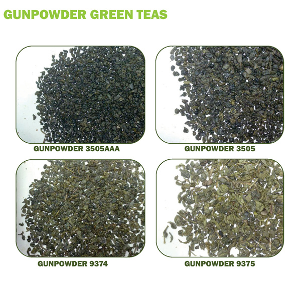 gun-powder green tea 9375 health food staff